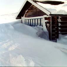 snoig-altan